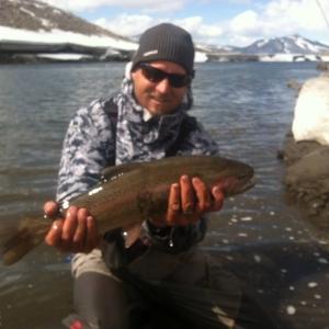 spring time rainbow spawn cutthroat cutbow ice melt
